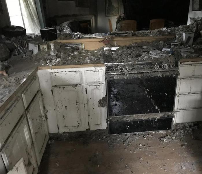 Kitchen Fire in Boise, ID