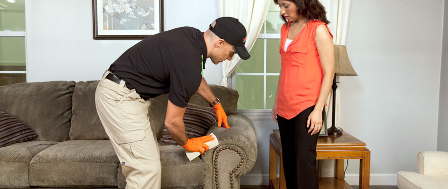 Boise, ID carpet upholstery cleaning